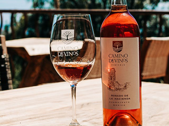 wine-tasting 2
