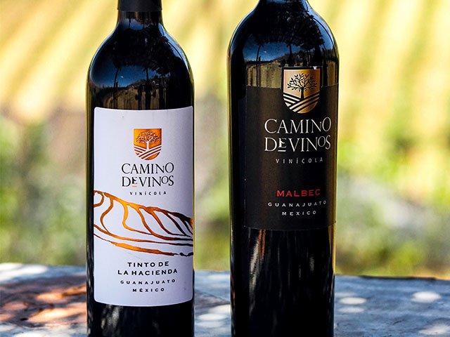 wine-tasting 3